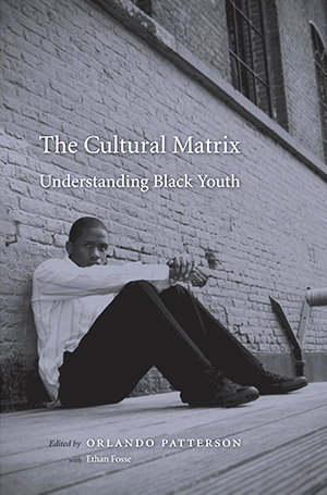 The Cultural Matrix: Understanding Black Youth