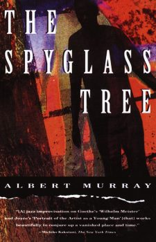 Cover of The Spyglass Tree (1991)