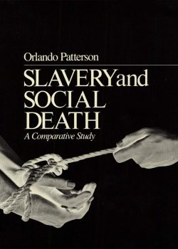 Cover of Slavery and Social Death (1982)