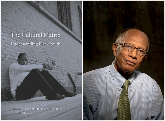 Orlando Patterson The Cultural Matrix